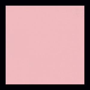 Blady róż 110 Nietypowe kolory