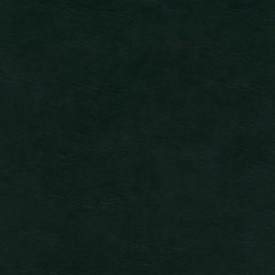 Ciemna zieleń 004