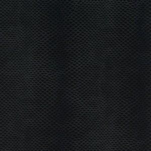 Czarny wąż 063