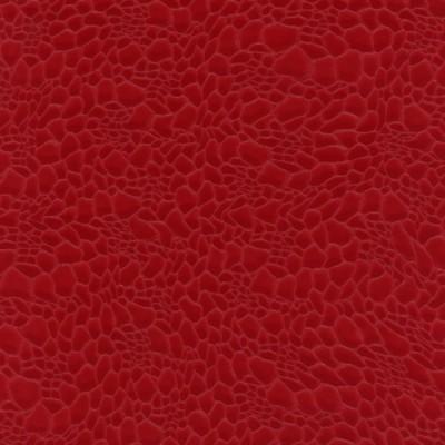 Czerwony jaszczurka 069