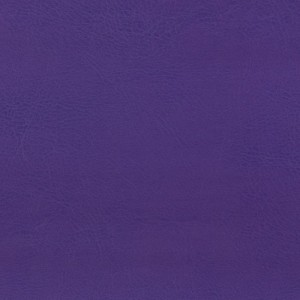 Fioletowy 074 Nietypowe kolory