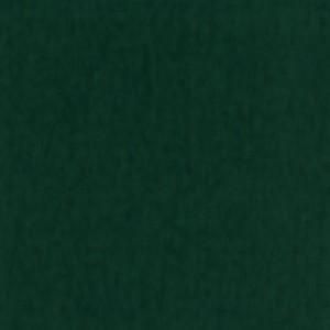Jasna zieleń 065 Zielone