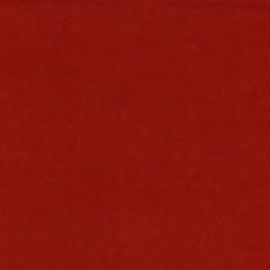 Marchewka 043 Nietypowe kolory