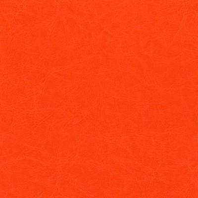 Pomarańcz 070