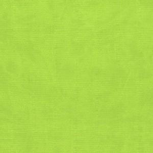 Seledynowy 107 Pastelowe - jasne