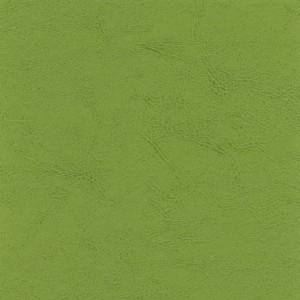 Seledynowy 125 Zielone
